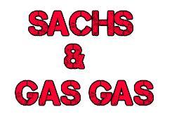 SACHS & GAS GAS