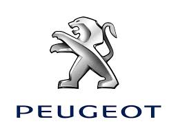 PEUGEOT SPEEDFIGHT 1/2 AC/LC - BUXI - ELYSEO - METAL-X - BUXY RS