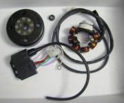 016.P10 MAGNETISCHE SCHWUNGRAD + PIASTRA COMPLETO
