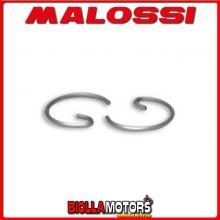 361806 MALOSSI Fermo spinotto D. 12x1 a G